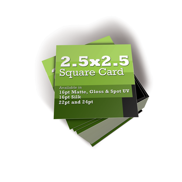 250 - 2.5 x 2.5 Square Business Card